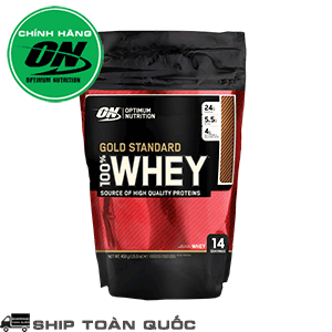 on-gold-standard-100-whey-1lb-454-g